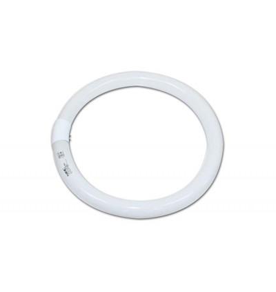 NEC - UV Black Light Tube 30w & 32w  (Circular)